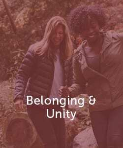 Belonging and Unity Online Learning image