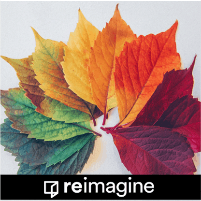 reimagine_facing_change